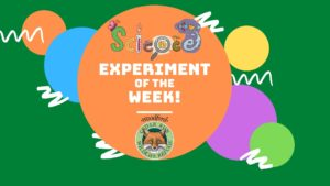 Science Experiment of the Week