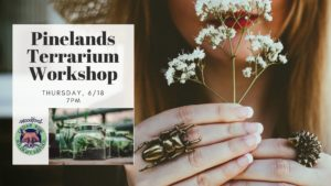 Pinelands Terrarium Workshop