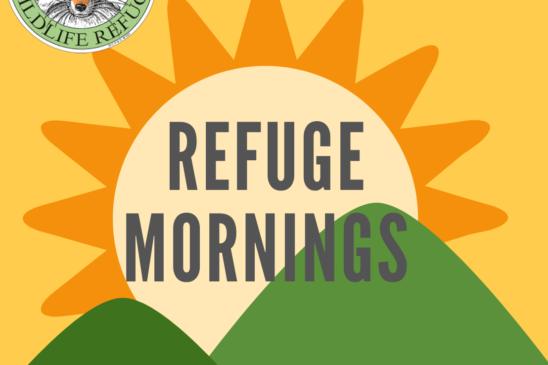 Refuge Mornings
