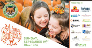 Autumn with the Animals Festival