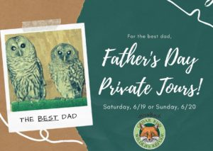 Dads and Grads Private Tours