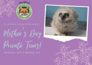 Mother's Day Private Tours